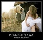[Slika: 17781488_princ.jpg]